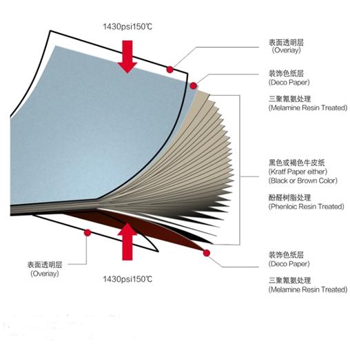 tanche r sistant au feu ph nolique hpl stratifi compact. Black Bedroom Furniture Sets. Home Design Ideas