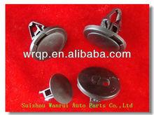Auto Plastic Clips / plastic fastener