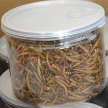 pet food supplies application for small animals mealworm