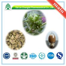 Hot Sale GMP Certificate 100% Pure Natural Tribulus Terrestris Fruit Tribuloside for long sex