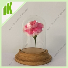 The blown glass dome is of a typical tall form, in a clear mixture//Wholesale Small Glass Dome Display Base