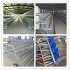 popular poultry cages for layer chickens from Dezhou