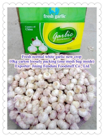 High Quality Fresh Natural Garlic White Garlic