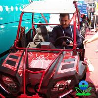 New china 250cc cheap 2 seat go kart china dune buggies