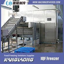 Good Quality iqf cherry freezing fast machine