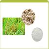 2015 Hot selling Rice Bran Extract powder, 10% Ceramide