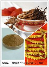 Top Qualtiy Yarsagumba Extract (Cordycep Sinensis)