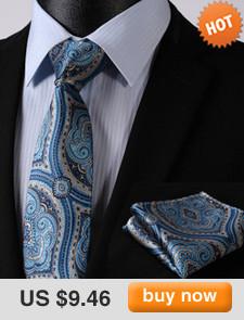 Мужской галстук TS06V7