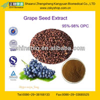 Competitive Price Grape Seed Extract 98% OPC Water Soluble