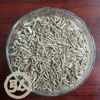 2010new crops, cumin seeds
