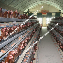 Professional galvanized automatic metal chicken pens