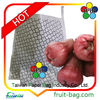 fruit protective paper bag for wax apple