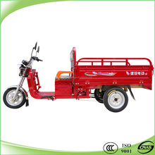 800w motor large electric adult tricycles