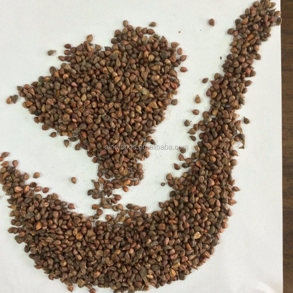 Grape seed (2).JPG