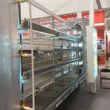 Factory Direct H Type Multi-tier Broiler Chicken Cage