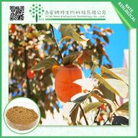 Factory supply Diospyros Kaki Leaf Extract/free sample Diospyros Kaki Leaf Extract Powder/low price Diospyros Kaki Leaf P.E.