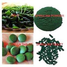 Chlorella/Spirulina Tablet, Powder