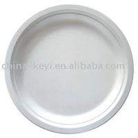 sugar cane disposable plate