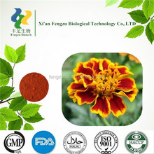 Wholesale price marigold flower extract lutein 10%
