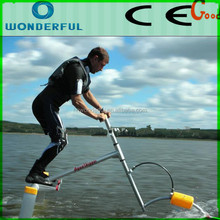 Water sports rides water bike, cheap price water bird for sale