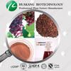 HALAL Kosher Grape Seed Extract Powder