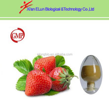 high quality strawberry powder strawberry plants