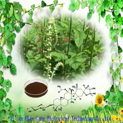 GMP Factory Supply Black Cohosh Herbs Extract Powder