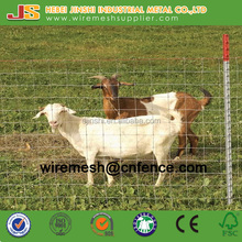 Galvanized Cow Fence Factory Direct Sale for Cattle, Deer, Horse, Chicken
