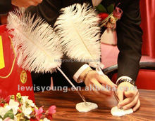 Wedding Decorative Stand Feather pen, Ostrich Feather Signature Pen