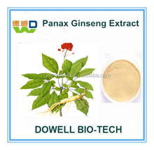 100% Water Soluble with High quality Ginsenosides 5%-80% Panax Ginseng Extract/Panax Ginseng Extract Powder