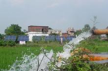 Big flow rater solar water pump for cash crop irrigation