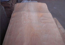 Natural yellow poplar wood types of recon wood veneer recon okoume