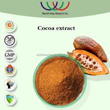 High quality factory price Cocoa powder /Cocoa seed extract with 40% polyphenol