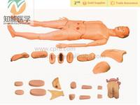 Medical training nursing male manikin