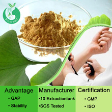 Pincredit Supply High Quality Ginkgo Biloba Extract