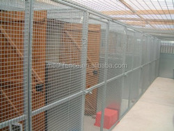 "2"" x 11 Gauge Hot Dipped Galvanized Wire high quality guarante dog cages"
