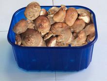 European Market Hot Sales Vacuum Forming Blue Supermarket Plastic Tray For Fruit