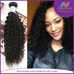 Wholesale Price No Smell No Shedding No Synthetic Nice No Tangle Smoothest Jerry Curly Indian Hair Human Hair Wig