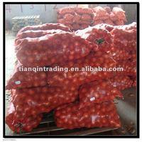Fresh Red Onion 2011 grop