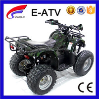 Adult Electric 48V ATV Quad Bike Motorcycle 4 Wheels