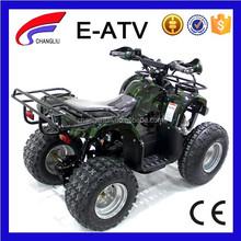 Adult Electric 48V ATV Quad Bike Motorcycle 4 Wheels