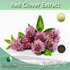 100% natrual Red Clover Flower Extract, Trifolium Pratense Extract, Red Clover Extract Powder