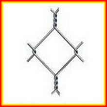 electro galvanizing chain link fence dog cage