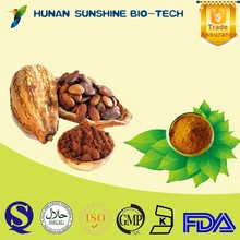 Natural low fat cocoa powder high quality and high purity at best price