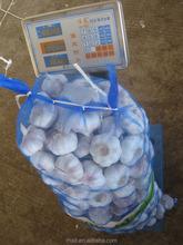 Hot: Bulk Garlics 2015 Garlic Supplier by Shandong Garlic Factory