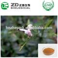 andrographis paniculata استخراج الموارد الطبيعية 90% andrographolides