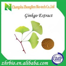 100% Pure Natural High Quality ginkgo biloba extract