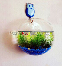 Fishbowl -Clear Glass Vase Fish Tank Ball Bowl+feet/ Succulents Planter Terrarium Hydropon
