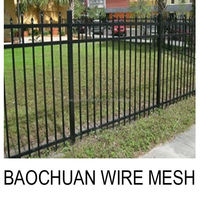 Warrior style cheap price powder coated Galvanized steel picket fence