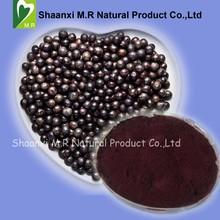 Natural Anti Oxidant Acai Berry Powder 4:1 / 10:1